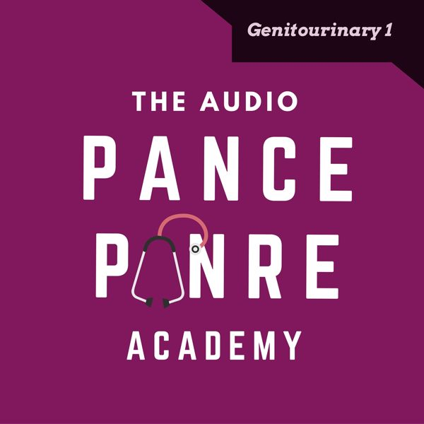 Genitourinary 1: The Audio PANCE and PANRE Podcast Topic Specific Review Episode 35